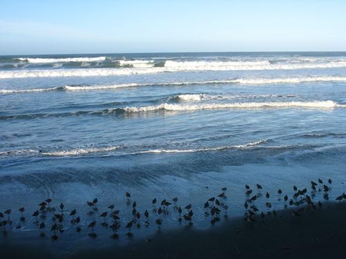 Ocean Beach 12-30-07