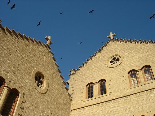 04 School Crosses and Birds